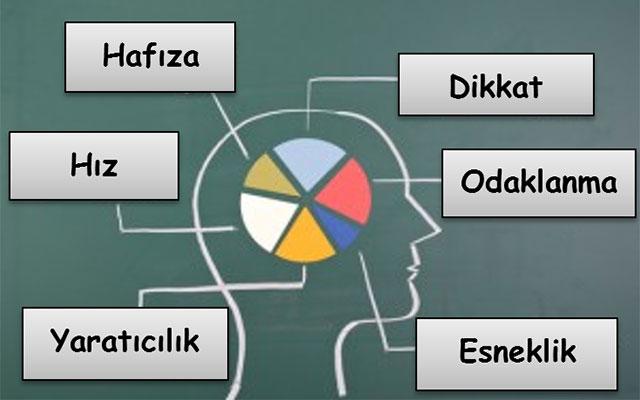 Nöropsikolojik Değerlendirme I
