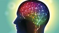 Neurofeedback (Sinirsel Geribildirim) ve Anksiyete