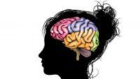 Ergenlerde Madde Kullanımının Beyin Yapısına Etkileri