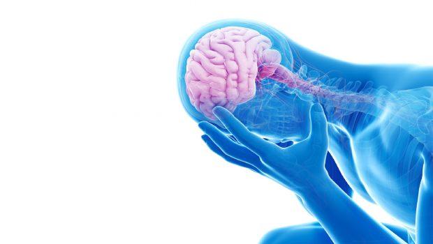 Kronik Stres Beyni Nasıl Değiştirir ve Bunu Tersine Çevirmek İçin Ne Yapabiliriz?