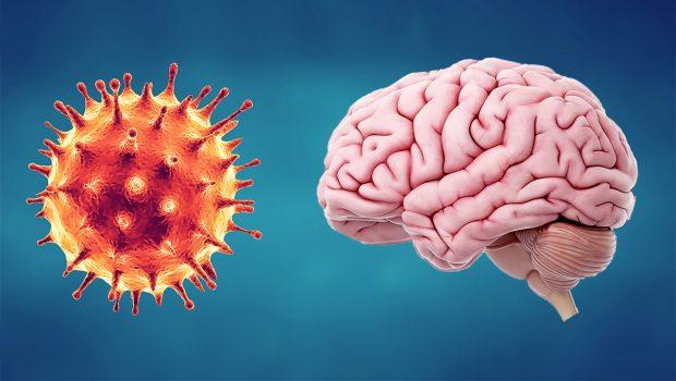 Beyin ve Koronavirüs