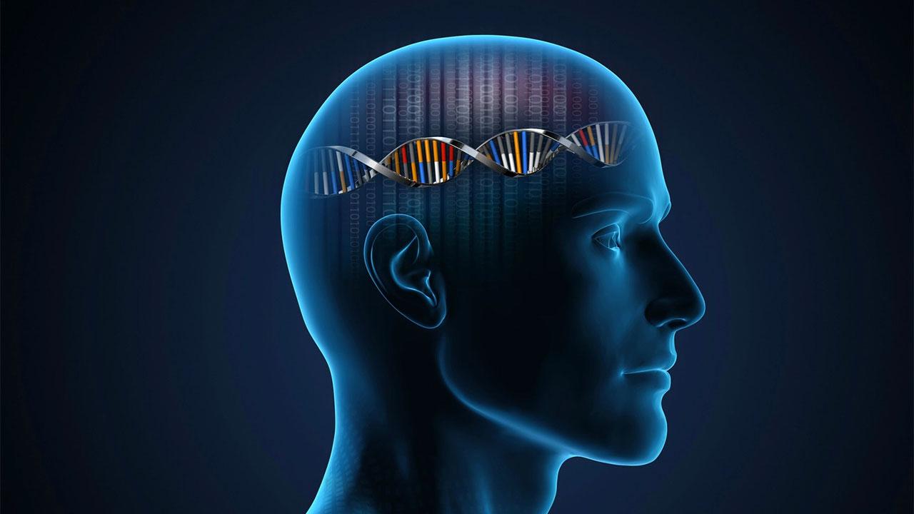 IQ ve Genetik