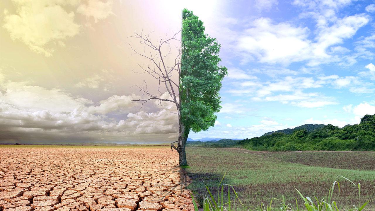 İhmal Edilen Gerçeklik: İklim Değişikliği